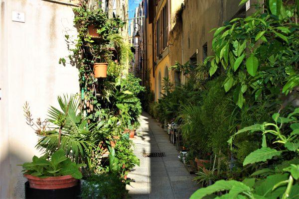 Passeggiata a Cagliari+degustazione (15)